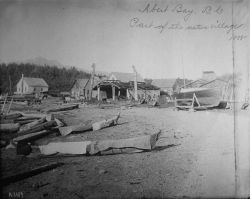 Alert Bay, BC, part of the native village, 1888. Photo