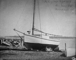 Fishing boat Puget Sound, WA, San Juan Ids., halibut boat, 1895. Photo