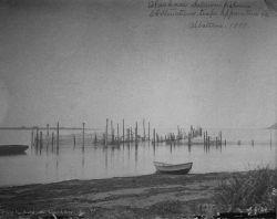 Alaskan salmon fisheries, obstructions, traps, apparatus, etc., Albatross, 1897. Photo