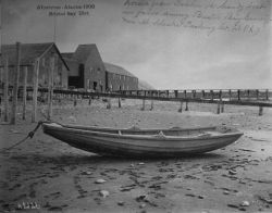 Albatross, AK, 1900, Bristol Bay district, Norwegian prahm, a handy boat in favor among Bristol Bay cannery at Alaska Packing Co Photo