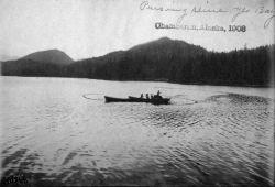 Chamberlin, AK, 1903, pursing seine. Photo