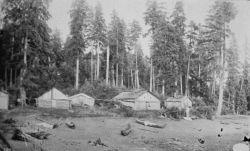 Village Karta Bay, Alaska, Alaska settlement and buildings, 1889. Photo