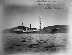 Albatross at anchor, Port Otway, western Patagonia, 1888. Photo