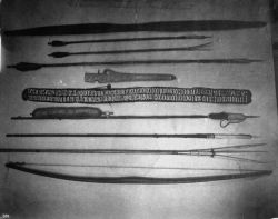 Eskimo hunting implements, 1891. Photo
