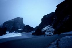 A seaside colony of chinstrap penguins at Seal Island in 1991. Photo