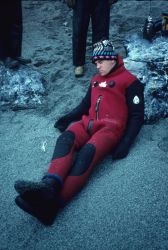 An Antarctic fur seal, with warm winter coat. Photo
