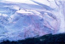 Pink ice, South Shetland Islands. Photo