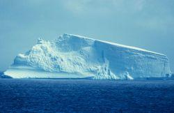 Tabular iceberg, South Shetland Islands. Photo