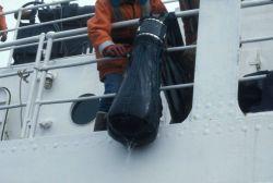 IKMT cod end on NOAA Ship Surveyor. Photo