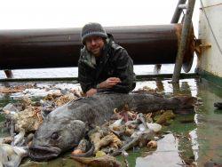 Antarctic ichthyologist Dr Photo