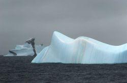 Striated icebergs, South Shetland Islands. Photo