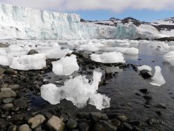 Melting ice at the edge of a glacier, King George Island. Photo
