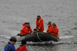 AMLR Program scientists bring supplies to the Copacabana field camp using a Zodiac inflatable boat Photo