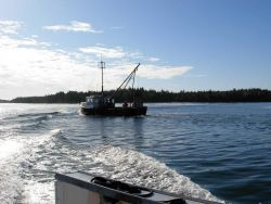 Clam dredger EMPTY POCKETS seen operating in Passamaquoddy Bay area Photo
