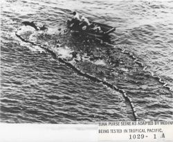 Tuna purse seine as adapted by Medina being tested in tropical Pacific. Photo