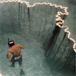 BCF snorkeler inside of test seine net in pool Photo