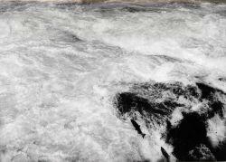 Salmon leaping falls Photo