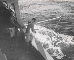 Deploying the bathythermograph from the Fisheries Research Vessel HUGH M Photo