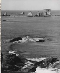 Seal rocks off Point Chiniak Photo