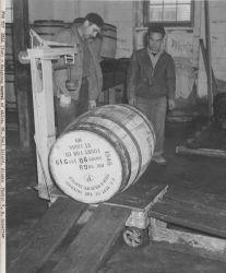 Weighing barrel of fur seal skins Photo
