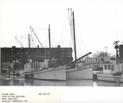 Oyster boats in the harbor at Annapolis Photo