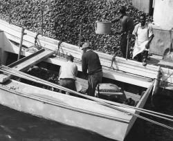 Oyster tonger unloading his catch on buy boat Photo