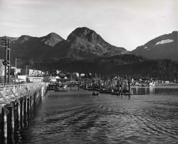 Cordova Commercial Fish Boat Harbor Photo
