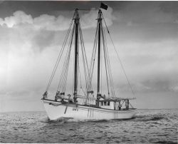 The LOIS G., built in 1957, is a 57 gross ton, 72-foot wooden snapper vessel of the type used in the 1960's fishery Photo
