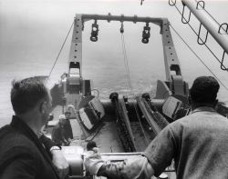 Trawling operations on the ALBATROSS IV. Photo