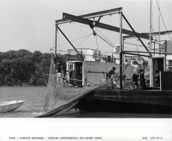 Alewife research - Setting experimental mid-water trawl net from Virginia Institute of Marine Science ferry boat LANGLEY. Photo