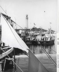Fishing boats with Pilgrim Monument in the background Photo