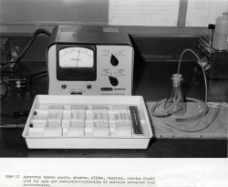 Apparatus (power supply, chamber, slides, template, suction flask) used for agar gel immunoelectrophoresis of proteins extracted from invertebrates. Photo
