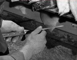 Filleting knives Photo