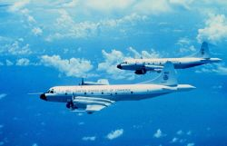 NOAA P-3's N42RF and N43 RF flying on a mission together. Photo
