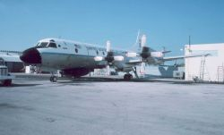 NOAA P-3 N42RF on the tarmac Photo