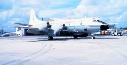 NOAA P-3 N43RF on the tarmac Photo