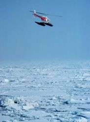 Lieutenant Terry Laydon leased Bell 206 during OCSEAP seal studies in Bering Sea Photo
