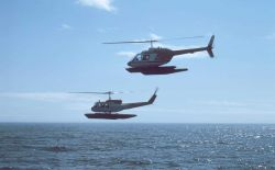 Upper helicopter Bell 206 Jet Ranger; lower helicopter Bell UH-1H Huey at Cape Douglas. Photo