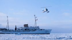 Leased Bell 206 flying in support of seal studies in Bering Sea. Photo