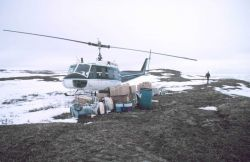 Unloaded Bell UH-1M helicopter with camp gear for bird studies in the Prudhoe Bay area at remote camp site Photo