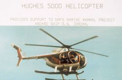 McDonnell-Douglas MD-500D helicopter multi-mission helicopter used by NMFS to fly off the NOAA Ship DAVID STARR JORDAN. Photo