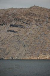 Ship names painted on the cliffs of Tagus Cove, Isabela Island Photo