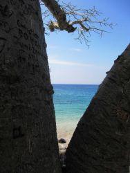 Blue Lagoon in Sao Tome Photo