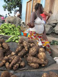 Sao Tomean Women Selling Roots at Local Market Photo