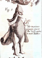 A relatively benign merman complete with scales caught in the Baltic Sea in 1531 according to Johann Zahn's sources Photo