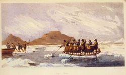 Novel ferry Photo
