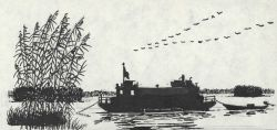 Pen and ink drawing of survey boat working in a marsh Photo