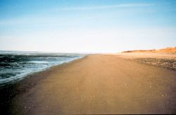Looking north along the beach near Naknek on Kvichak Bay Photo