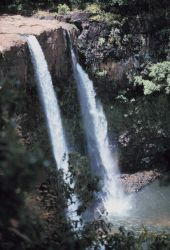 Wailua waterfall Photo
