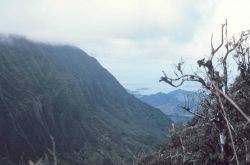 Looking down a rugged valley to the sea Photo